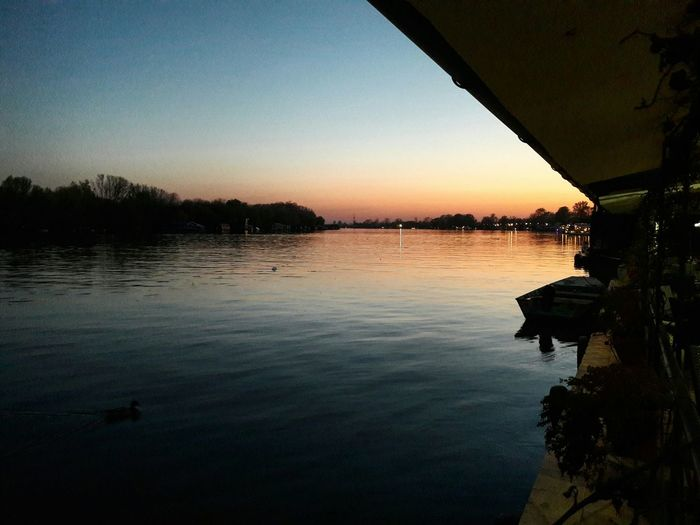 River River View Tree Sunset Reflection Water No People Day Beauty In Nature Sunset_collection Sunsetlovers Serbia-Novi Beograd Dark And Light Quiet Beauty Floating On Water On Water By The River Ducky  Ducks😄