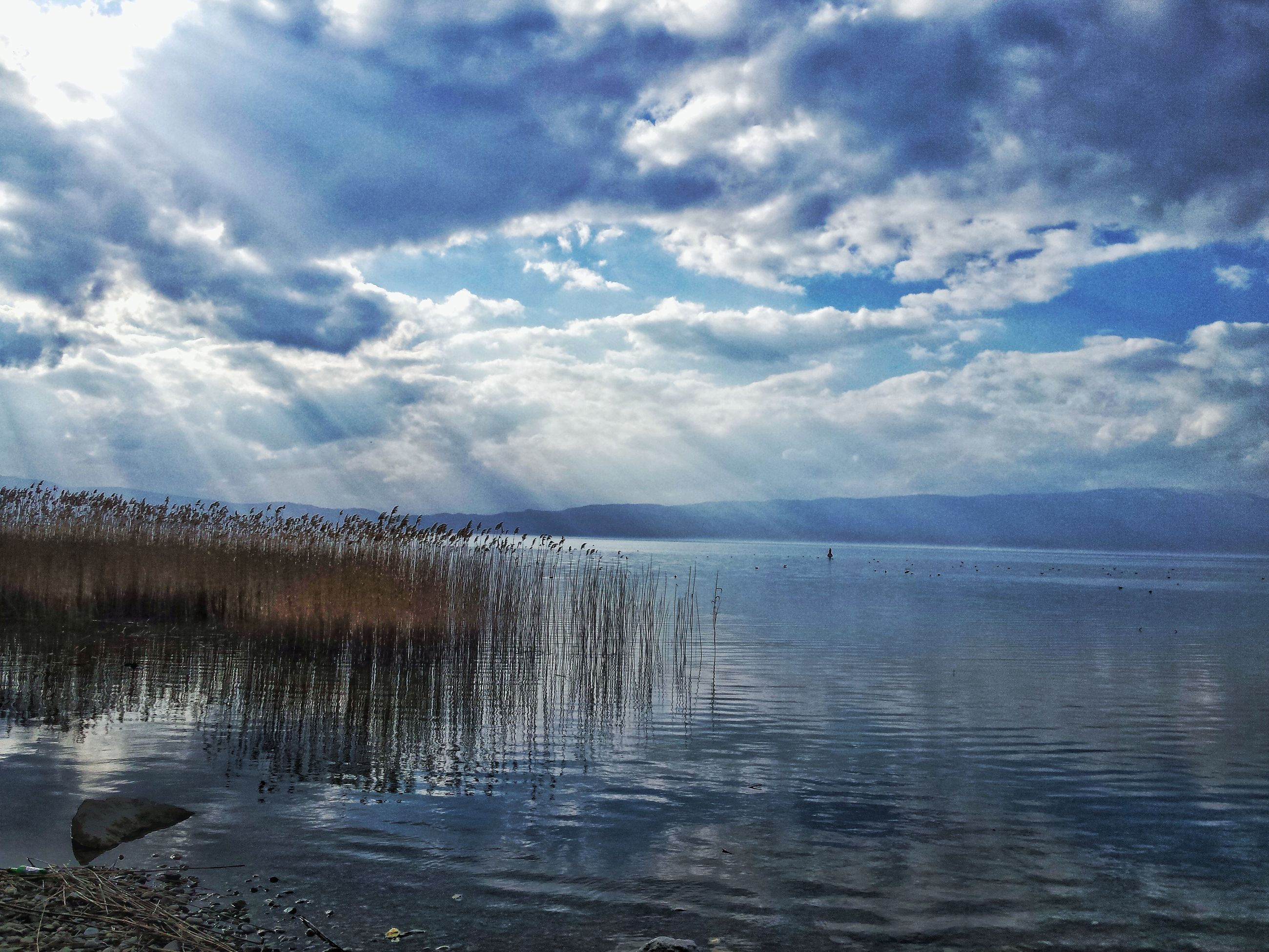 sky, cloud - sky, tranquility, water, nature, beauty in nature, tranquil scene, scenics, sea, no people, non-urban scene, idyllic, outdoors, day, tree, horizon over water