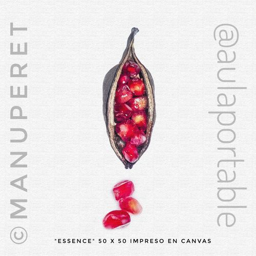 Red No People Fruit Close-up White Background Day Canvas Print Essence Esencia Femenine Power Femeninefigure FemeninaNull Femenidad Pura Femenine Detail Femenino Femeninity For sale. Original 50x50 canvas print or digital digital image. Please direct aula.portable@gmail.com