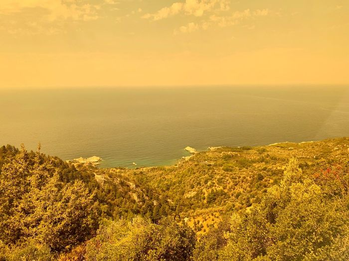 Ocean The View