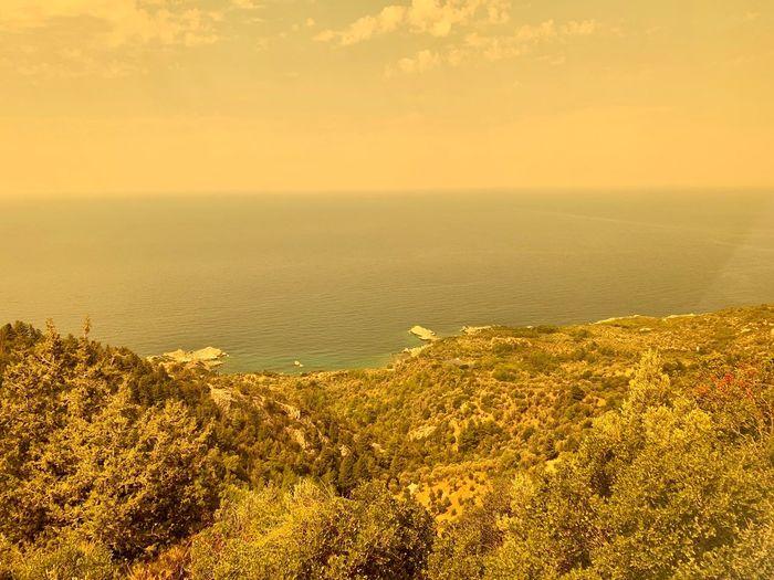Oceanside Ocean