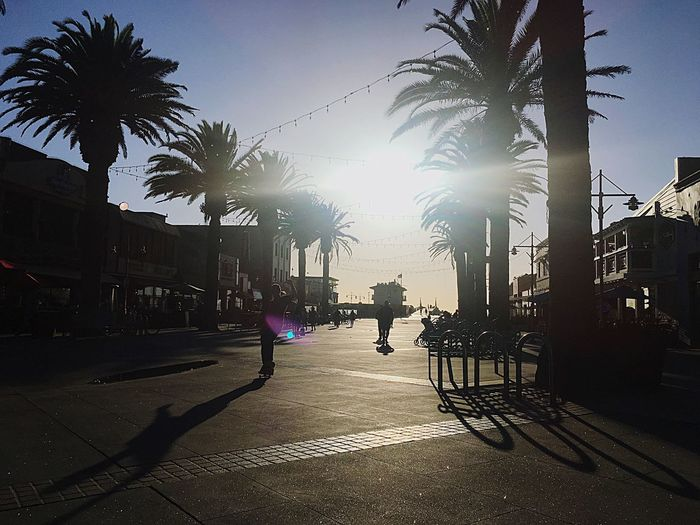 Californication The Beach Life Rami Bdiri The Pacific The Beach Life Palma Sky City Street Nature Tree Building Exterior Sunlight Architecture Plant City Life Day Outdoors Silhouette Group Of People Built Structure Transportation Incidental People Wet Footpath Real People