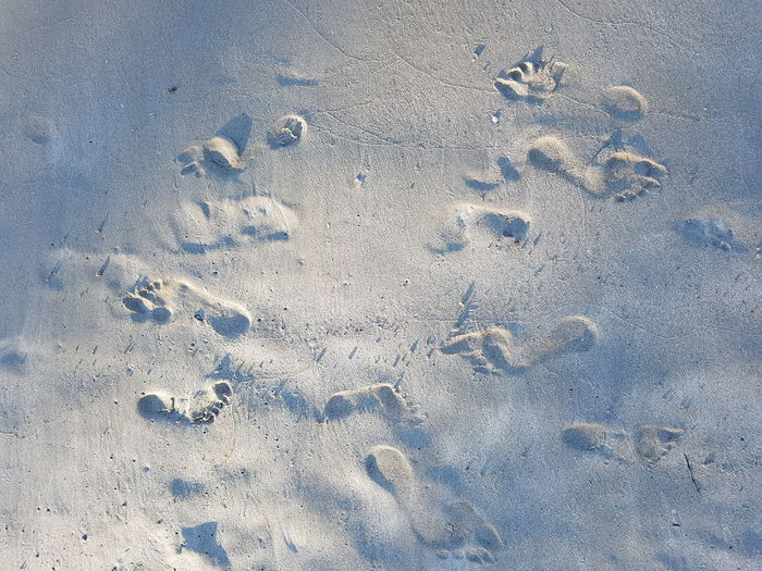 Directly Above Shot Of Footprints On Sand At Beach