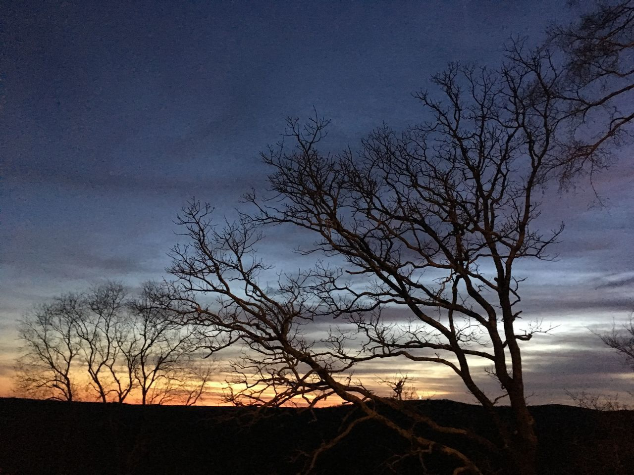 sky, tree, cloud - sky, bare tree, silhouette, beauty in nature, sunset, tranquility, tranquil scene, scenics - nature, nature, plant, no people, dusk, land, branch, non-urban scene, landscape, environment, outdoors