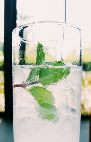 Close-up Cold Cold Beverages Cool Day Drink Focus On Foreground Fragility Fresh Freshness Freshness Glass Glass - Material Green Color Ice Iced Mint Mint Leaves No People Refreshment Selective Focus Still Life Thirsty