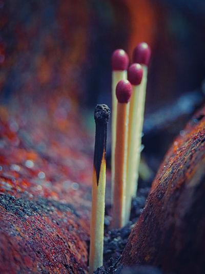 Close-Up Of Matchsticks