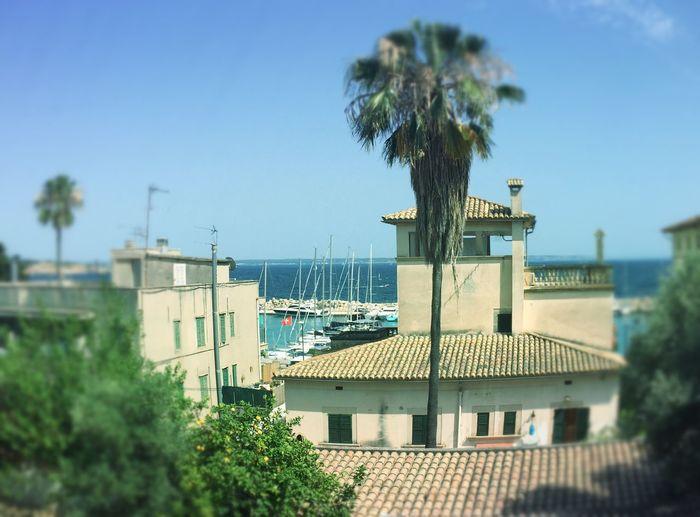 Palma Mallorca Palma De Mallorca St. Augustí Calanova