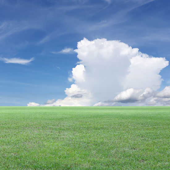 Green Field and Blue sky view,Green lawn for the design nature background. Blue Sky White Clouds Field Field Trip Fields Photography Fieldscape Nature Blue Sky Blue Sky And Clouds Blue Sky And White Clouds Blue Sky Background Blue Sky With Clouds Field Of Flowers Fields Fields And Sky Fields Of Green Fieldtrip Green Lawn Green Lawns Naturephotography