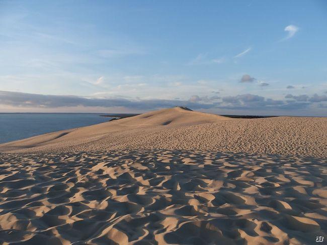France Dune Du Pyla EyeEm Gallery EyeEm Best Edits The Week On Eyem EyeEm Best Shots - Nature Eyem Best Shots