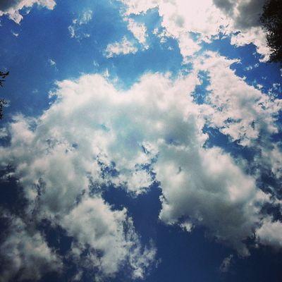 ♥ @vanywee @whatsthaaatshit chilln. Cologne See Chillen Love sunshine sun