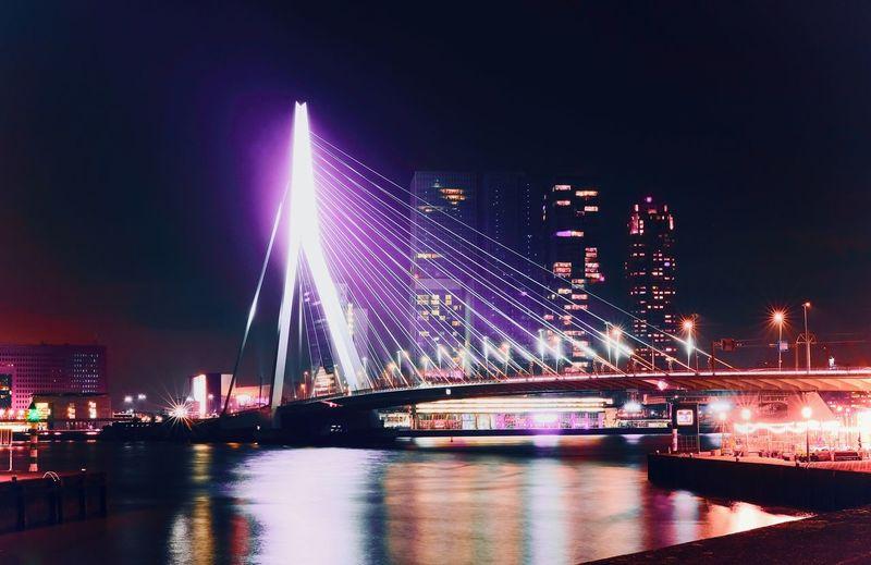 Rotterdam 2049