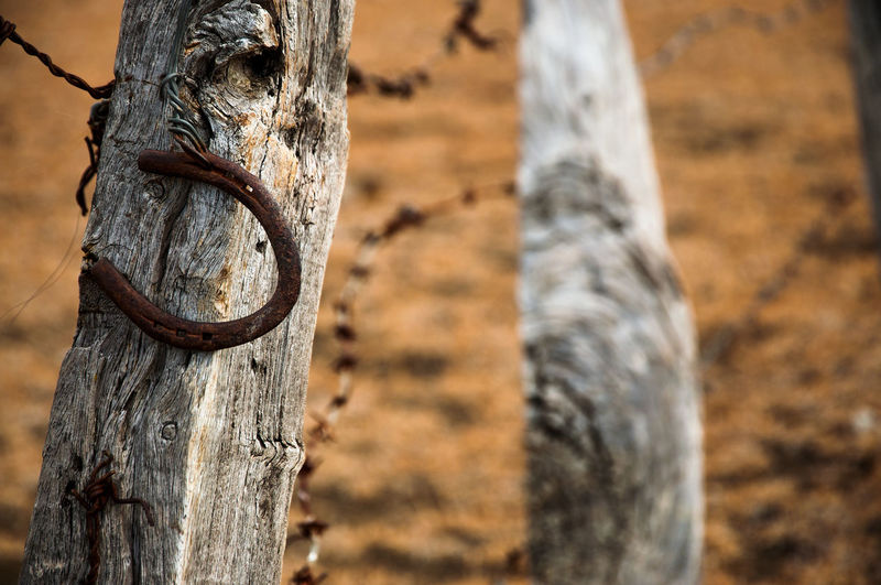 High angle view of old rusty horseshoe magnet on wooden fence