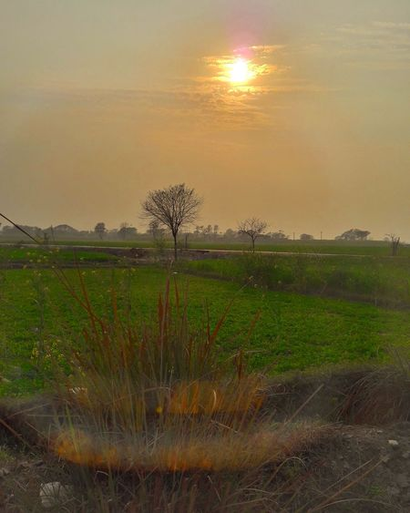 Mobile Click Beautiful Nature Pakistanphotochallenge Eyeem Pakistan InPakistan EyeEm Best Shots SamsungJ7 Mobilephotography Sunset_collection Sunset Withglasses