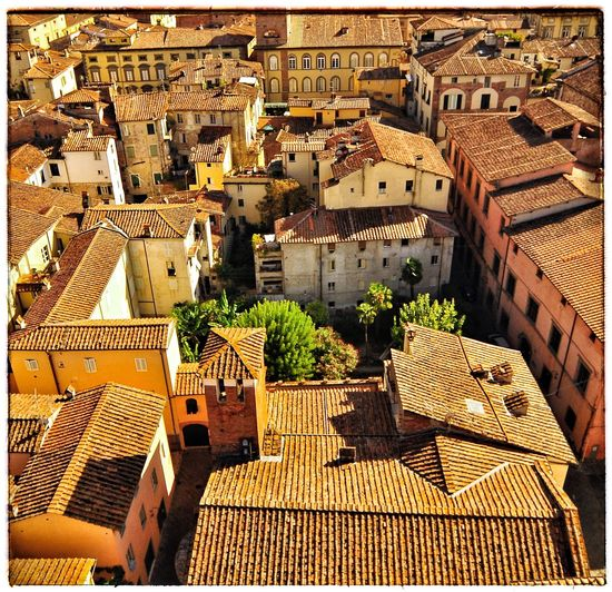 Lucca Italy Architecture Building Exterior Built Structure High Angle View City Building Sunlight Day Sunny Travel Roof Tile Roof Outdoors
