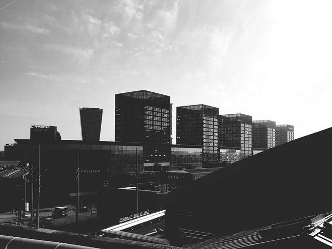 Urban Landscape Skyline Architecture Blackandwhite Rooftop View