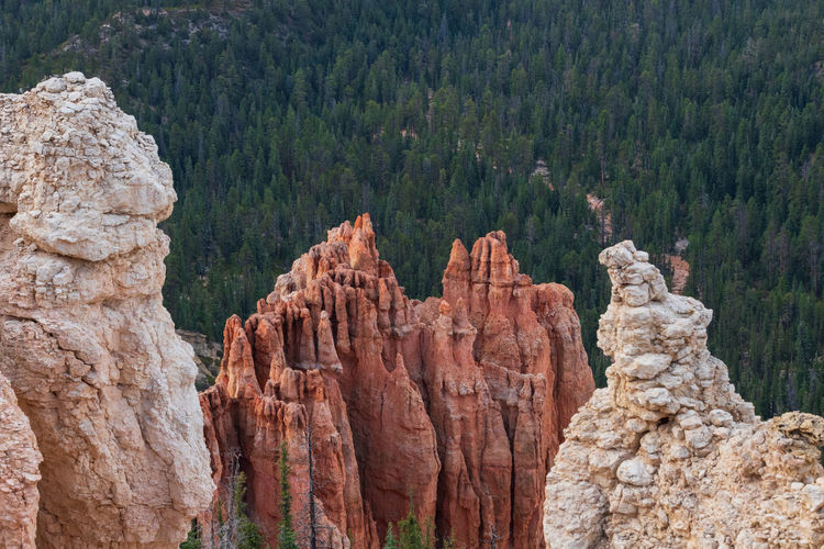 the overwhelming Bryce Canyon Rock Rock - Object Non-urban Scene Nature Beauty In Nature Travel Destinations No People Scenics - Nature Tranquility Tranquil Scene Outdoors Eroded Formation Bryce Canyon Utah National Park Tree Solid Rock Formation Mountain Plant Travel Geology Physical Geography Pine Tree