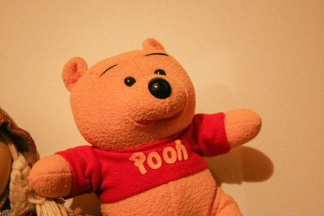 Amber Light Close-up Day Human Representation Indoors  Lieblingsteil No People Stuffed Stuffed Toy Teddy Bear Toy
