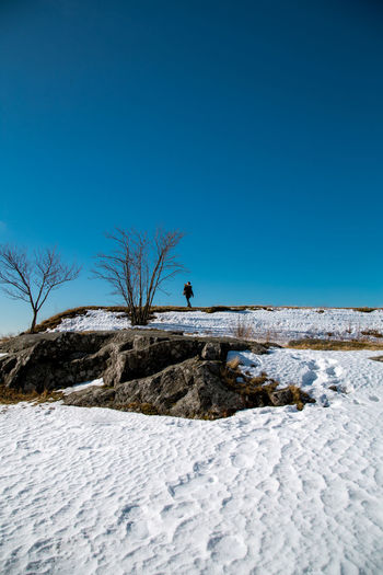 Helsinki in end winter Silhouette Silhouette_collection Human Silhouette Human Form Tinypeopleinbigplaces Travel Helsinki Finland Travel Destinations Winter Snow Barren Trees Clear Sky Snow Cold Temperature Winter Blue Full Length Men Beach Sand Sky Barren
