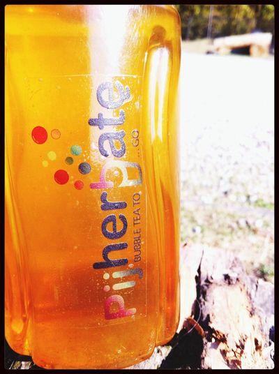 Cieplutki jaśmin w jesiennym słońcu ;) Pijherbate