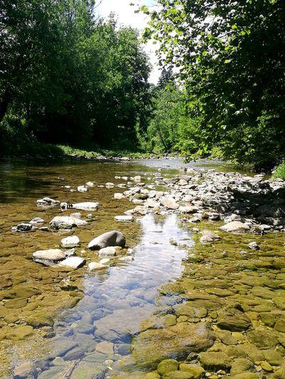 Waterland Stone