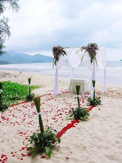 Flower Wedding Sky Cloud - Sky Bouquet Vase Beauty In Nature Nature No People Sea Celebration Beach Day Water Tree Tranquility Sand Scenics Outdoors