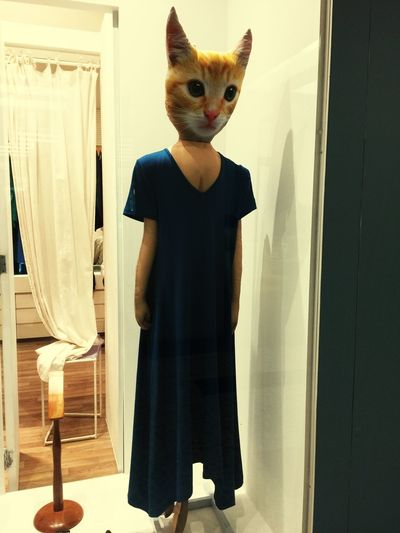 Catpeople Indoors  Standing One Person Real People Clothing Dress The Fashion Photographer - 2018 EyeEm Awards Fashion