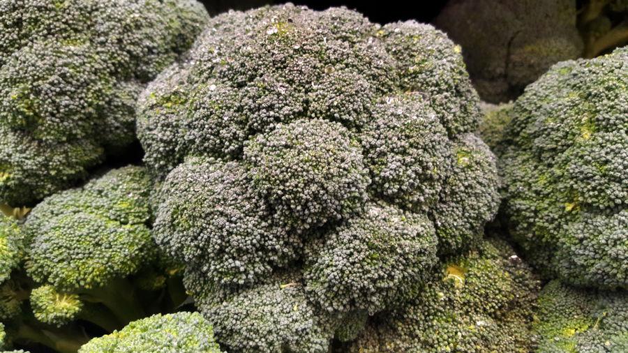 Broccoli fresh