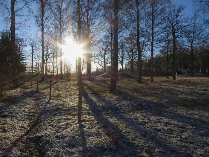 South Graveyard's Ironage January 2018 Ironage Gravefield Shadow Outdoors Tranquility Day Sky