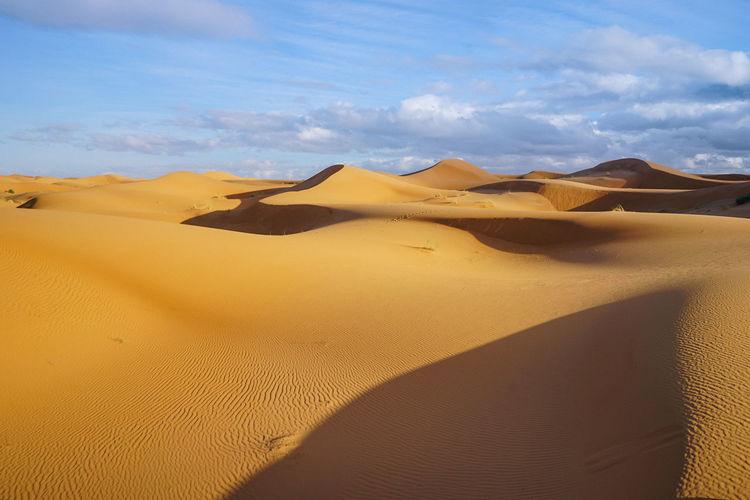 Sahara Desert, Morocco Desert Sand Dune Sand Climate Scenics - Nature Arid Climate Land Landscape Sky Environment Tranquil Scene Tranquility Cloud - Sky Nature Non-urban Scene Remote Day Beauty In Nature No People Sunlight Outdoors Atmospheric Sahara Desert Morocco Summer