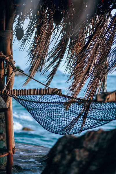 Hammock hanging between the coconut palm trees at the shore. Photograph shot at the beach during dusk. The background is the sea with mini islands. ASIA Chill-Out Coconut Decor Holiday Nature Palm Tree Relaxing Rope Tree Bay Beach Caribbean Chill Coast Decoration Decorations Dusk Evening Hammock Island Knot Ocean Paradise Resort