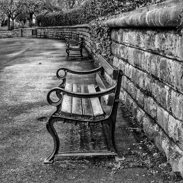 Taken in Werneth park OLDHAM with no edits Benches Benchporn A Walk In The Woods No People The Purist (no Edit, No Filter) Pure Photography The Purist ( No Edit, No Filter ) Mobile Photography Samsungphotography Samsung EyeEm BlackandWhite Creative Light And Shadow Shades Of Grey Black And White Photography Monocrome Creative Light And Shadow Black And White Eyeem Black And White Blackandwhite Photography B&w Photography Eyeem4photography EyeEm Masterclass Streetphoto_bw EyeEm Best Shots - Black + White See The World Through My Eyes The Minimals (less Edit Juxt Photography) Showcase: January Landscape With Whitewall