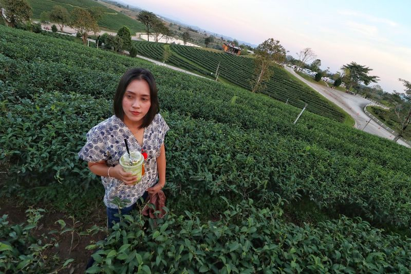 High angle view of thoughtful young woman with drink standing amidst plants on field during sunset