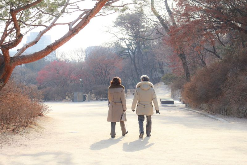 Rear View Walking Full Length Winter Tree Cold Temperature Togetherness Two People Outdoors Adults Only Adult Day