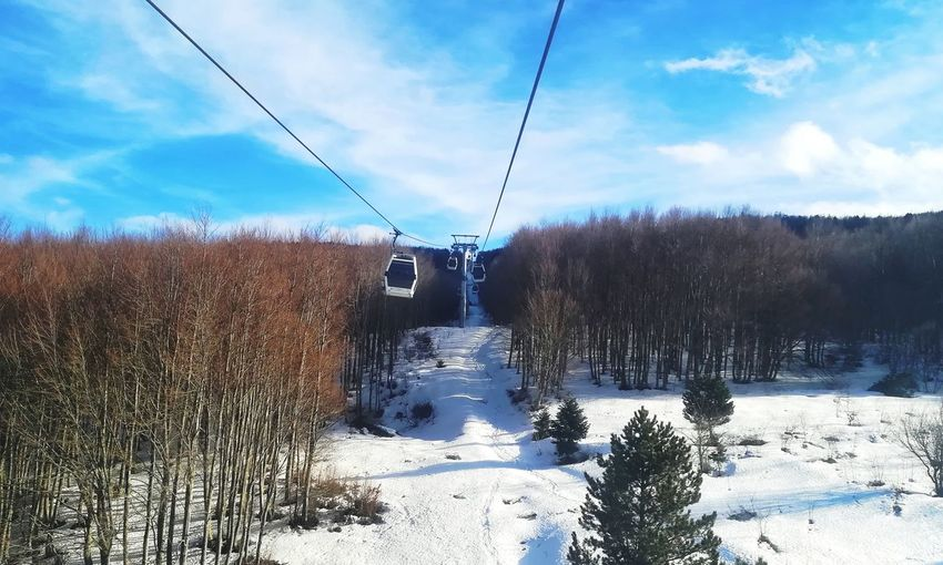 Uludag White Green Blue EyeEm Best Shots EyeEm Nature Lover Forest Tree Nature Day Snow Cold Temperature Winter Ski Lift Sky Cloud - Sky Scenics Overhead Cable Car Snowcapped Mountain Snowcapped Rocky Mountains Mountain Tranquility Frozen Mountain Range Weather