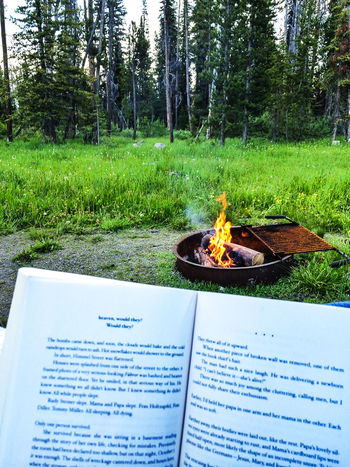 Reading in front of a campfire in the Sawtooth Mountains of Idaho Boo Camp Fire Camping Day Field Grass Grassy Green Color Growth Nature No People Outdoors Plant Sawtooth Mountains Tranquility Tree