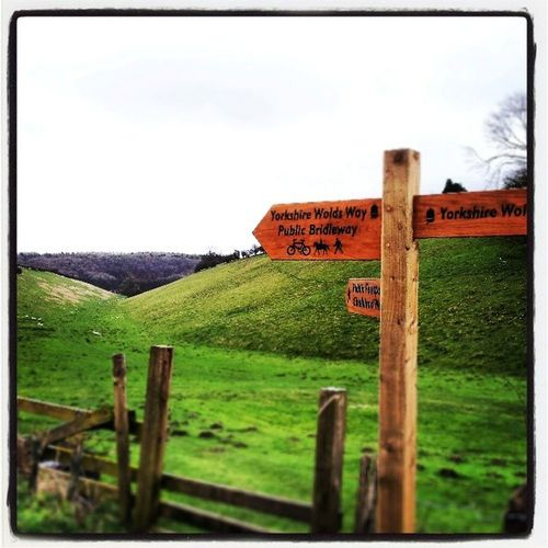 Yorkshirewolds Yorkshirewoldsway Huggate Fridaythorpe eastyorkshire thewalkingcaveman