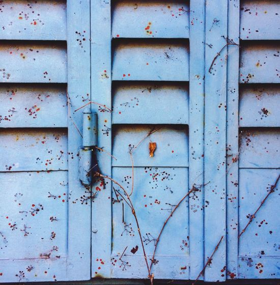 Full Frame Wood - Material Backgrounds Day Close-up Outdoors Door Weathered Textured  No People Blue Plants Window Collection Color Palette Textures And Surfaces Architectural Detail Getting Creative Getting Inspired Building Exterior