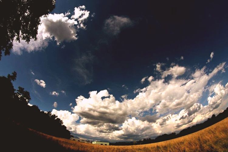 Fields Sky Wind Relax Clouds Infinity Fisheye Canon 1100D