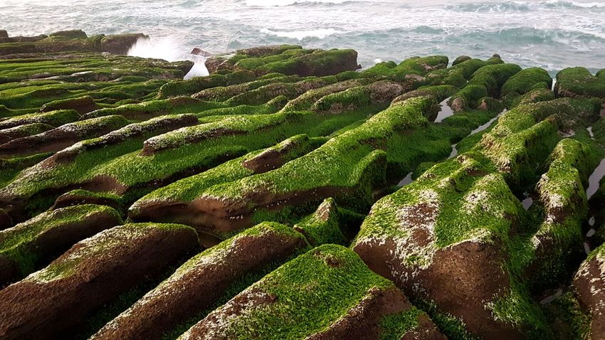 Nature Outdoors Sea Day Beach Water High Angle View No People Beauty In Nature Green Color Sunlight Wave