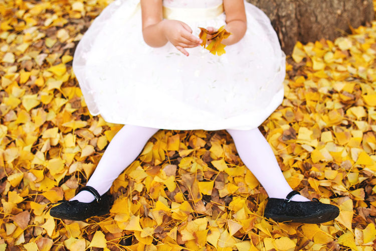 Low section of girl sitting on fallen leaves in park