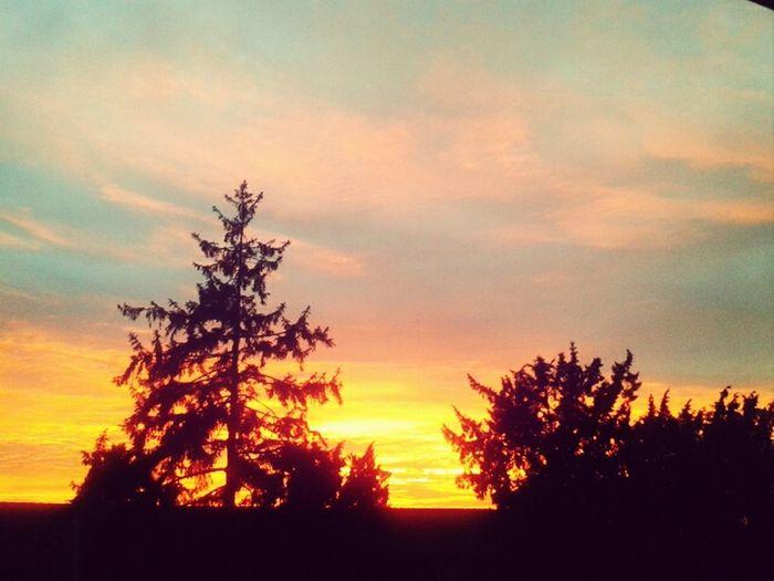 Sunset Holland Skyporn Sky