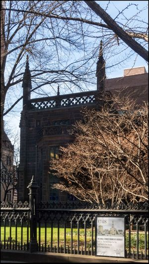 Winter Foliage - 1/20/16 1st Presbyterian Church Lucky To Have My Camera In Hand Old Architecture Outdoors Passing By In A Cab Strong Side Light When Opportunity Strikes