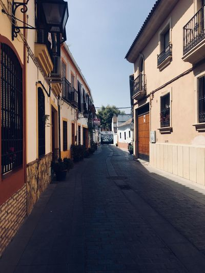 Narrow street in Andalusia EyeEm Selects Building Exterior Architecture Built Structure Direction City Building The Way Forward Residential District Transportation Diminishing Perspective No People Street Outdoors Clear Sky Road House Nature Day Sky Empty