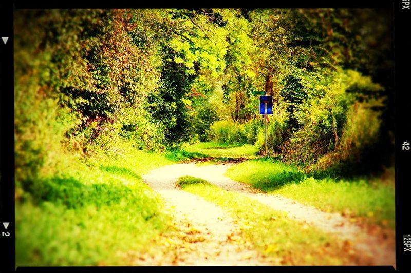 No Way Out Nature Meets Man Theroadtonowhere Nature