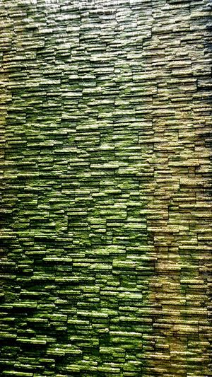 Backgrounds Full Frame Pattern Close-up Grass Green Color Green