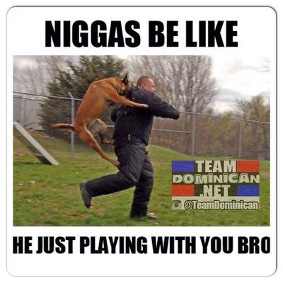 El solamente esta jugando contigo