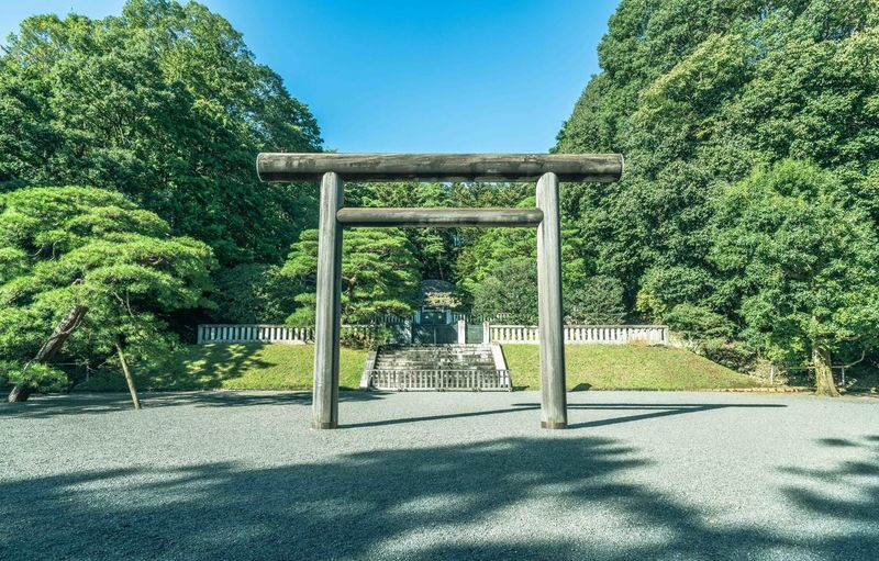 Torii Gate Against Trees At Park