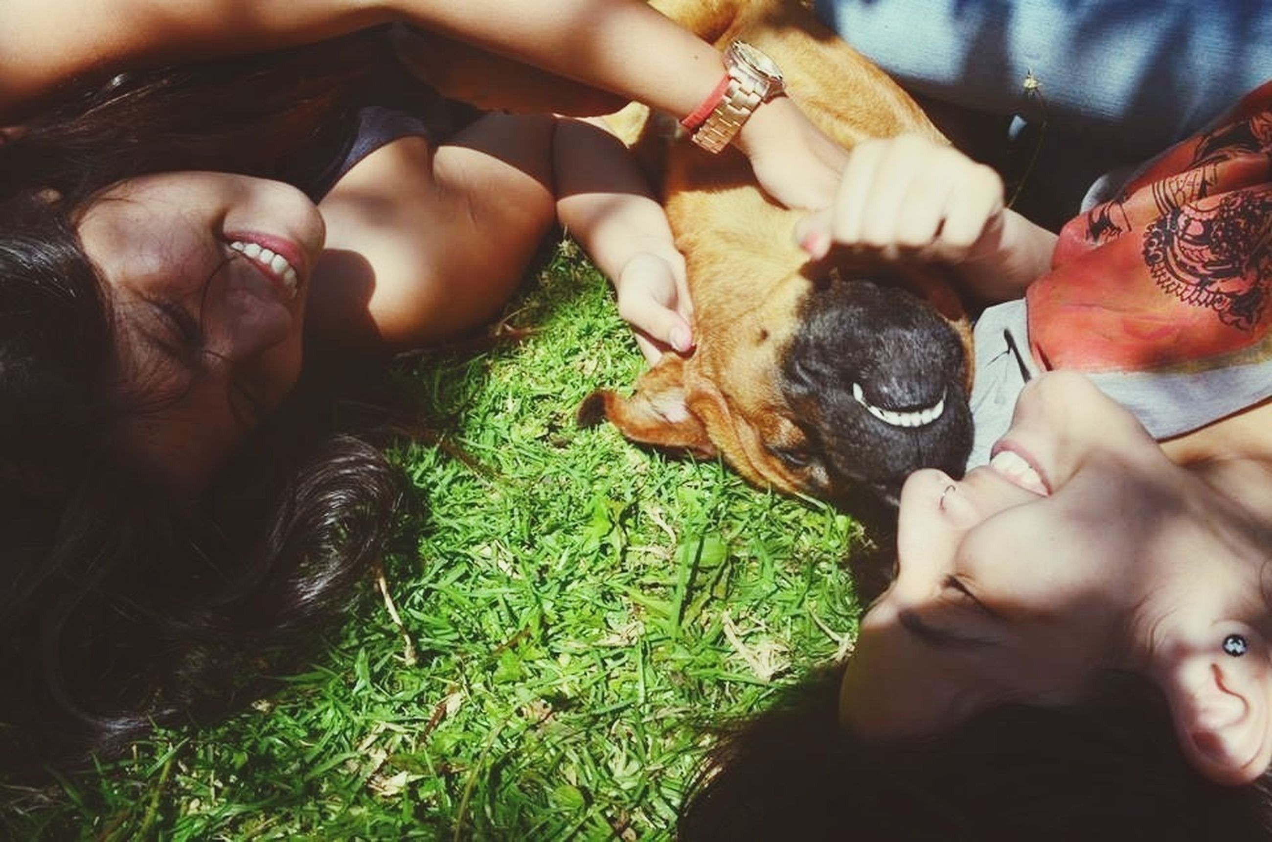 lifestyles, togetherness, leisure activity, bonding, animal themes, looking at camera, portrait, love, person, relaxation, young women, dog, pets, domestic animals, high angle view, friendship