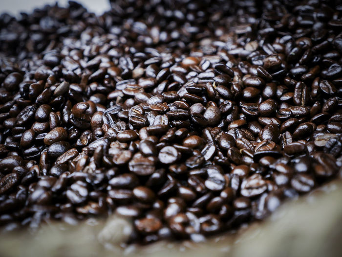 Arabica Arabicacoffee Bulk Coffee Cafe Culture Cofee Coffee Coffee Beans Coffee Shop Fair Trade Fair Trade Coffee Horizontal Italy Roast Liberica Liberica Beans Liberica Coffee No People Roasted Coffee Bean Robusta Coffee Beans