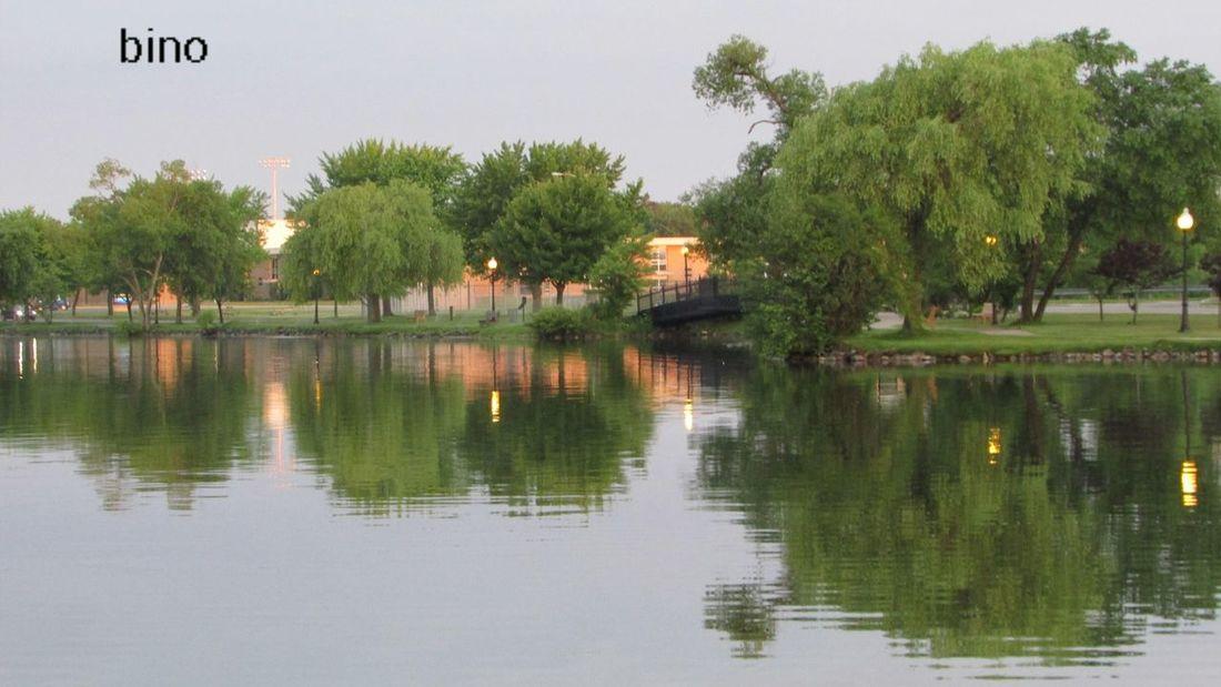 Taking Photos Around The Lake Lots Of Green!! Cool_capture_ Water Reflections Lake Cadillac Pure Michigan